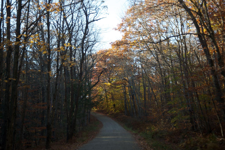 Route 2/Mohawk Trail