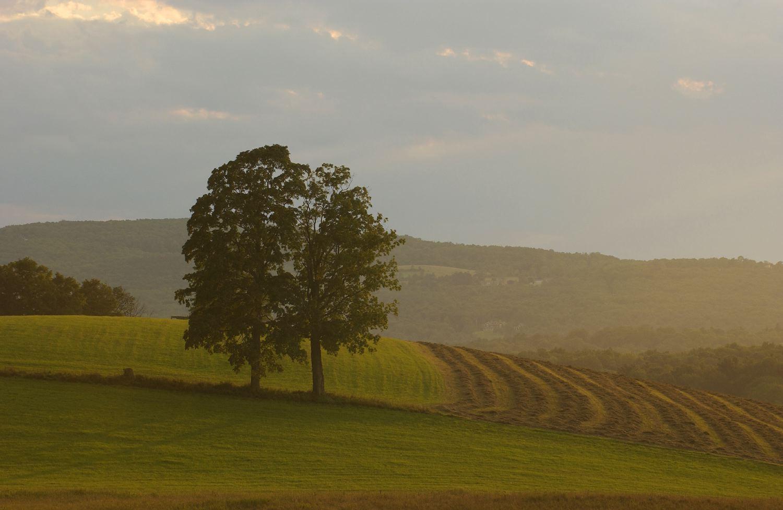 Farm Richmond Ma Berkshire Film And Media Collaborative