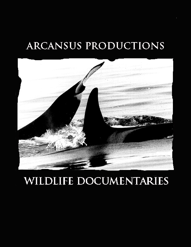 Arcansus Productions
